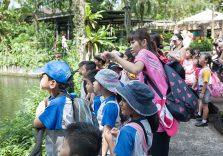 Education Enrichment Programs for Singapore Kids