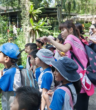 Education Enrichment Programs for Singapore Kids